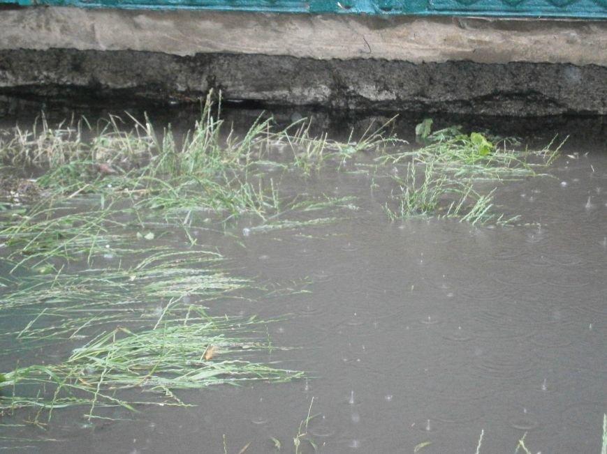 Как Димитров сегодня утопал в дождевых водах (ОБНОВЛЕНО) (фото) - фото 13