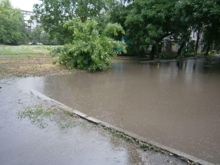 Как Димитров сегодня утопал в дождевых водах (ОБНОВЛЕНО) (фото) - фото 11