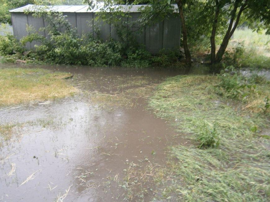 Как Димитров сегодня утопал в дождевых водах (ОБНОВЛЕНО) (фото) - фото 10