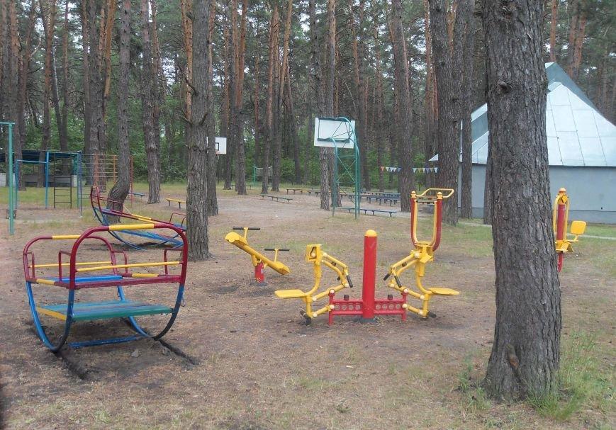 На Полтавщині відкрили сезон дитячого табору з більярдом та комп'ютерним класом. Фото (фото) - фото 3
