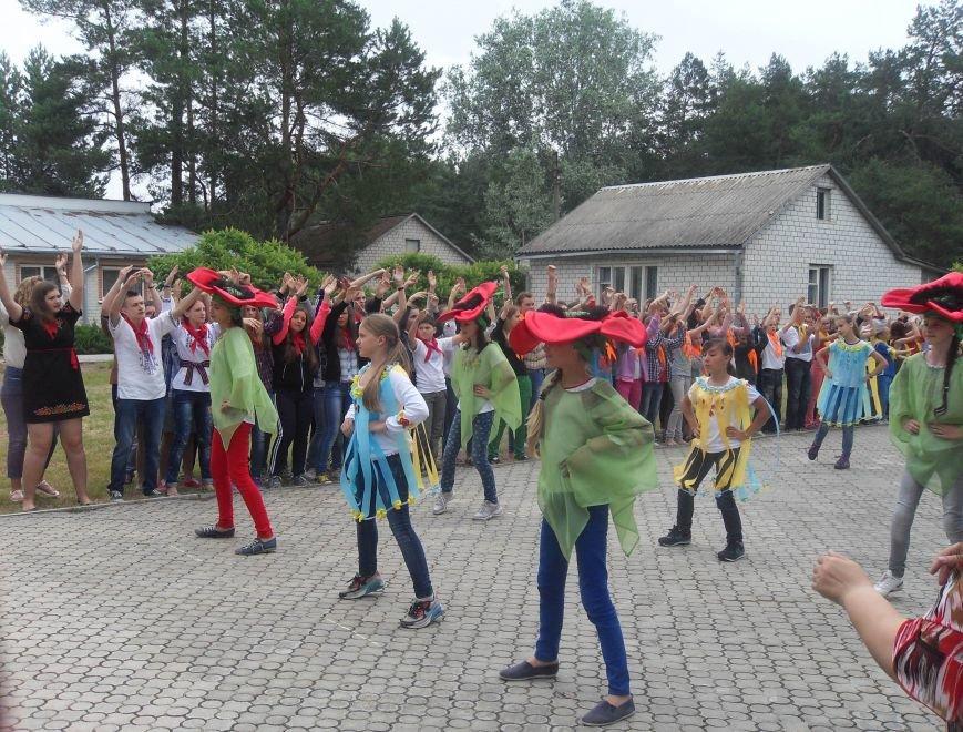 На Полтавщині відкрили сезон дитячого табору з більярдом та комп'ютерним класом. Фото (фото) - фото 2