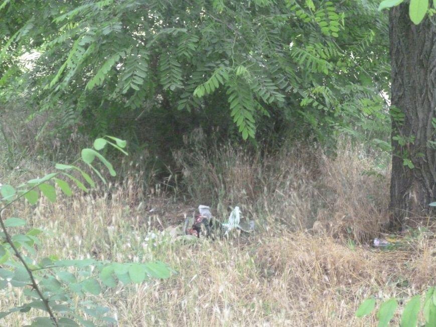Криворожане провели акцию по уборке Соколовки свалки и собрали средства раненой в зоне АТО Ирине «Лютику» (ФОТО) (фото) - фото 1
