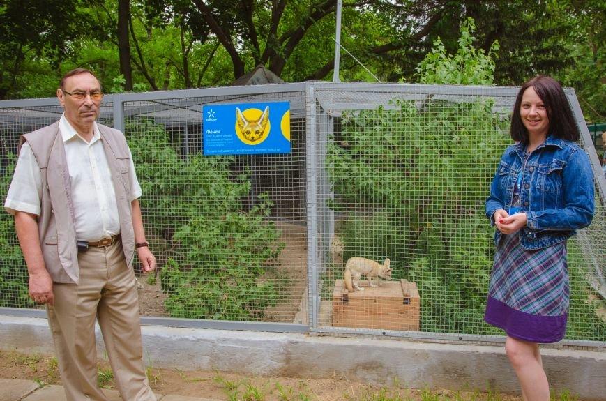 В зоопарке Николаева торжественно открыли новый вольер для фенеков (ФОТО), фото-1