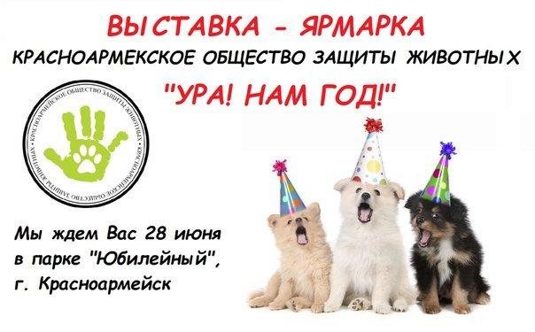 Красноармейское общество защиты животных празднует первый юбилей (фото) - фото 1