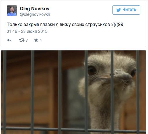 Screenshot - 23.06.2015 - 11:54:35