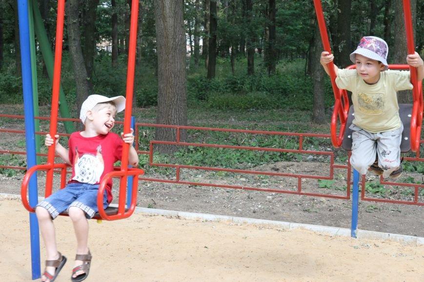 В Николаеве за 3 недели «выросла» новая детская площадка (ФОТО), фото-1