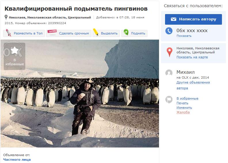 Пингвины_Николаев