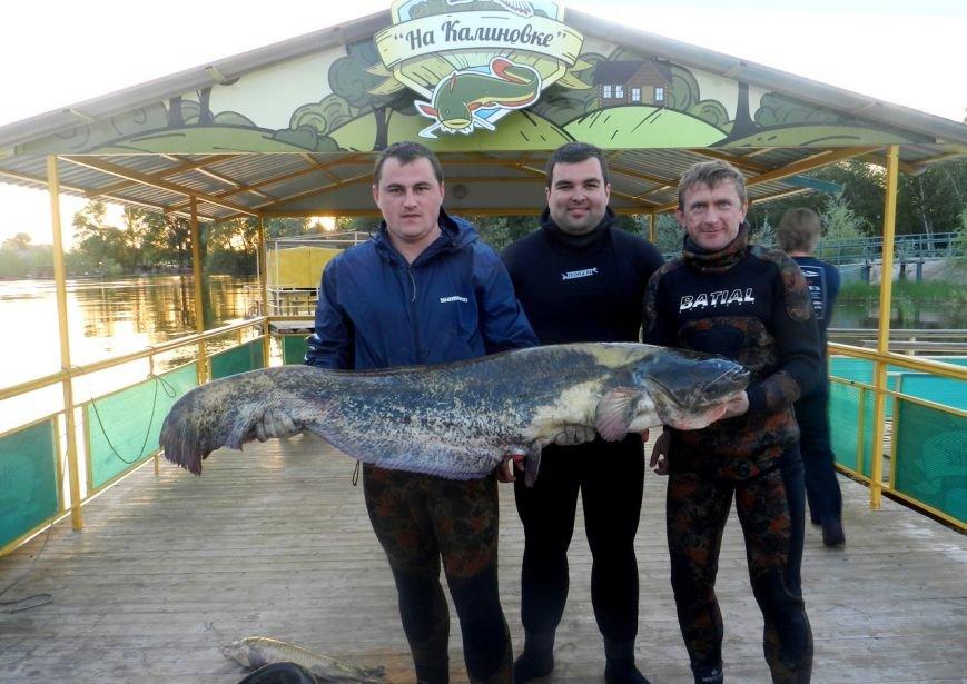 В Астрахань - за рыбой! (фото) - фото 1