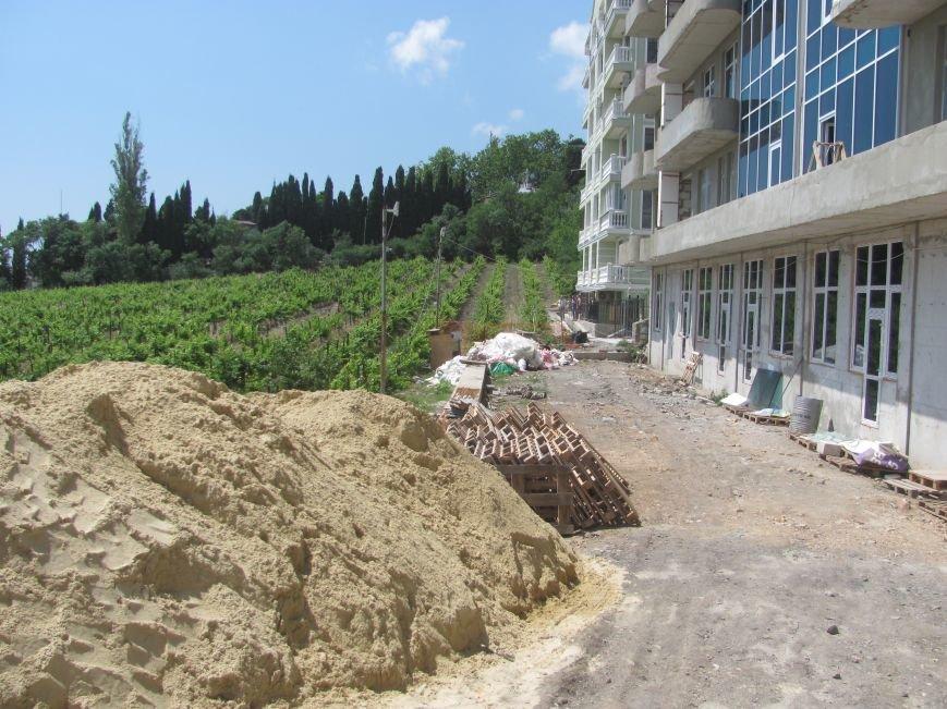 Ценные виноградники «Массандры» застраивают многоэтажками. Власти Крыма пообещали провести проверку (ФОТО), фото-4