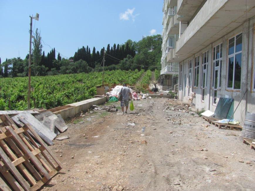 Ценные виноградники «Массандры» застраивают многоэтажками. Власти Крыма пообещали провести проверку (ФОТО), фото-3