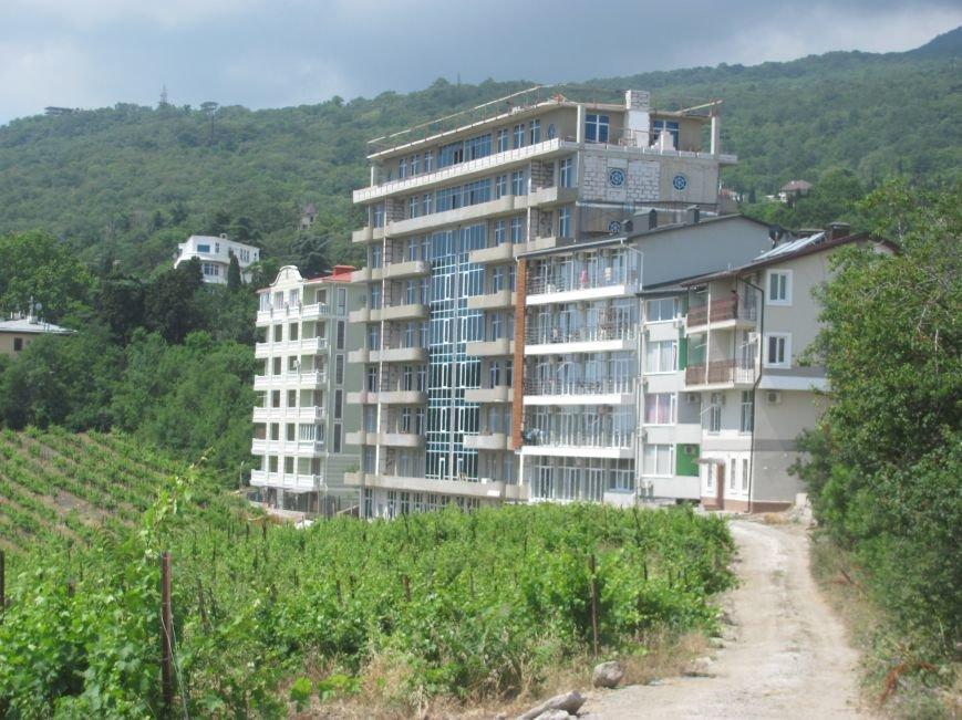 Ценные виноградники «Массандры» застраивают многоэтажками. Власти Крыма пообещали провести проверку (ФОТО), фото-2