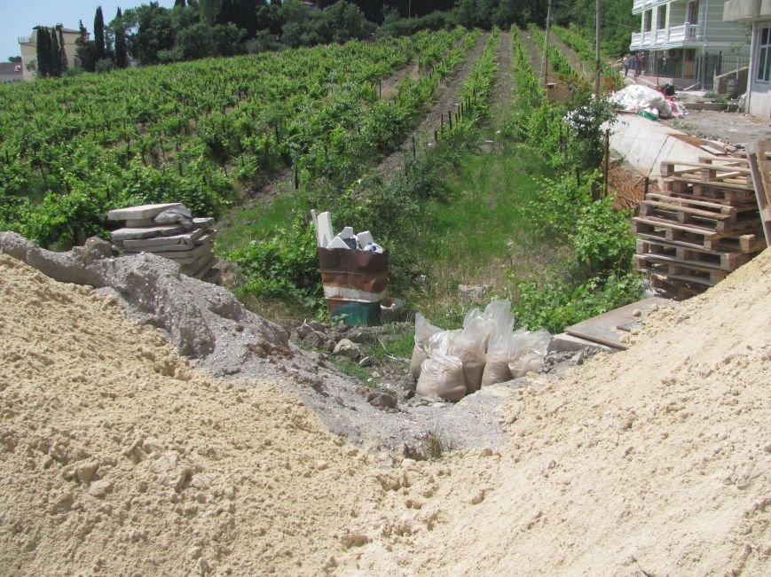 Ценные виноградники «Массандры» застраивают многоэтажками. Власти Крыма пообещали провести проверку (ФОТО), фото-5
