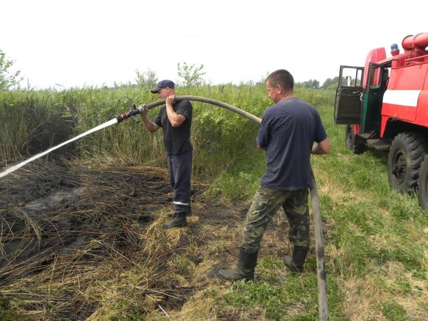 В Черниговской области снова горят торфяники (фото) - фото 1