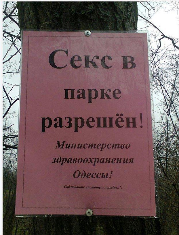Фотофакт: В одесском парке разрешили интим (фото) - фото 1