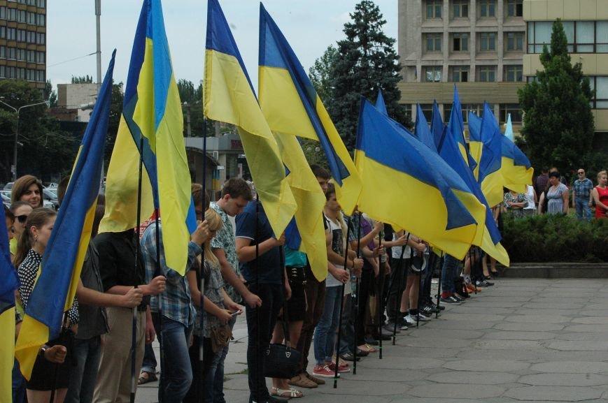 В Запорожье митинг ко Дню Конституции прошел под знаменами Украины и президентской партии (ФОТО), фото-1