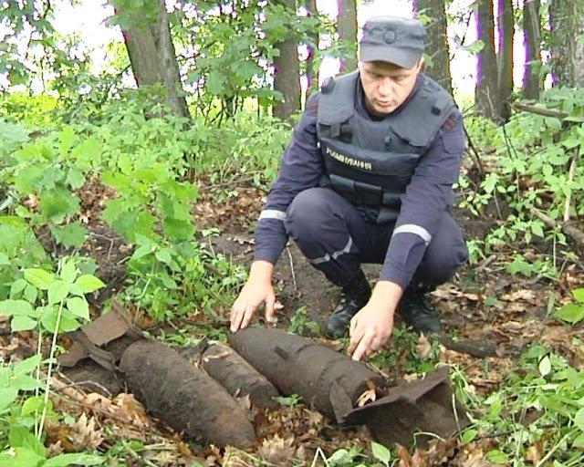Шесть опасных снарядов 70 лет лежали в лесополосе в Черниговской области (фото) - фото 1