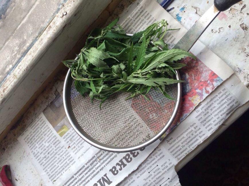 У жителя Баглейского района изъяли 70 кустов конопли и марихуану, фото-2