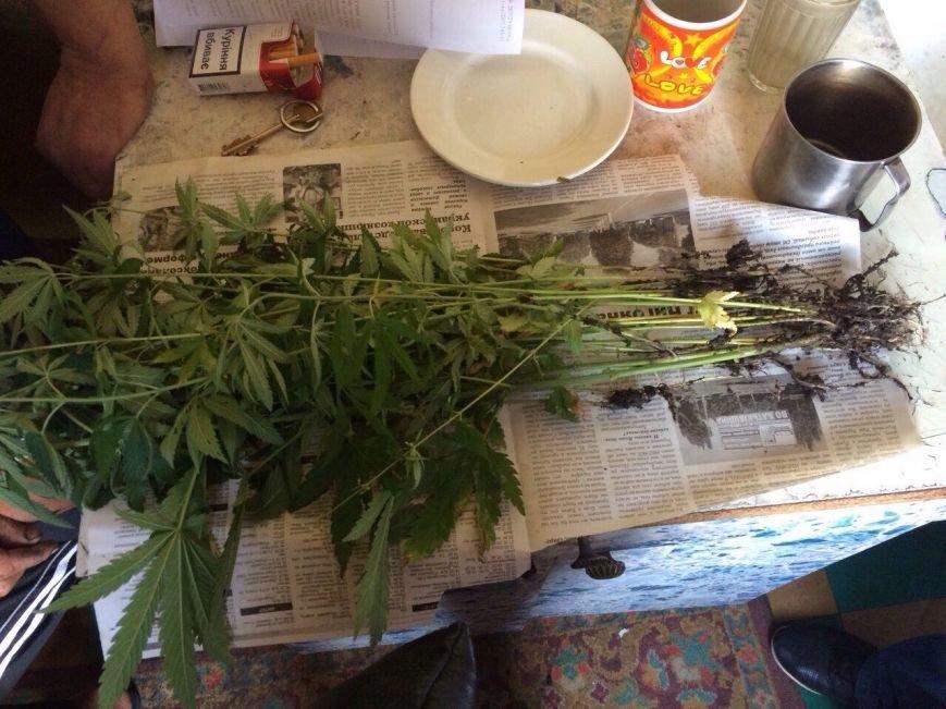 У жителя Баглейского района изъяли 70 кустов конопли и марихуану, фото-1