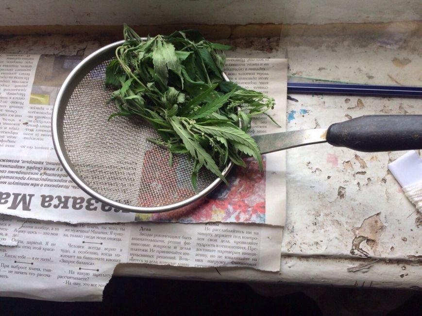 У жителя Баглейского района изъяли 70 кустов конопли и марихуану, фото-5