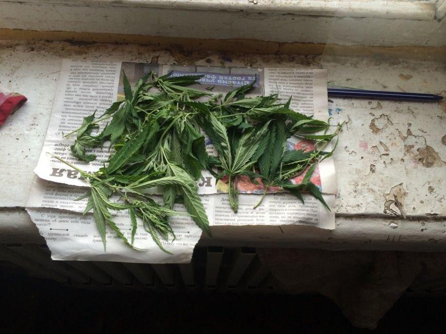 У жителя Баглейского района изъяли 70 кустов конопли и марихуану, фото-3