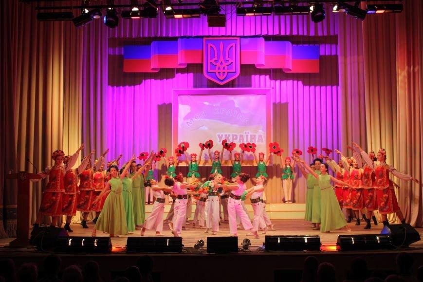 В Артемовске отметили День Конституции, фото-5