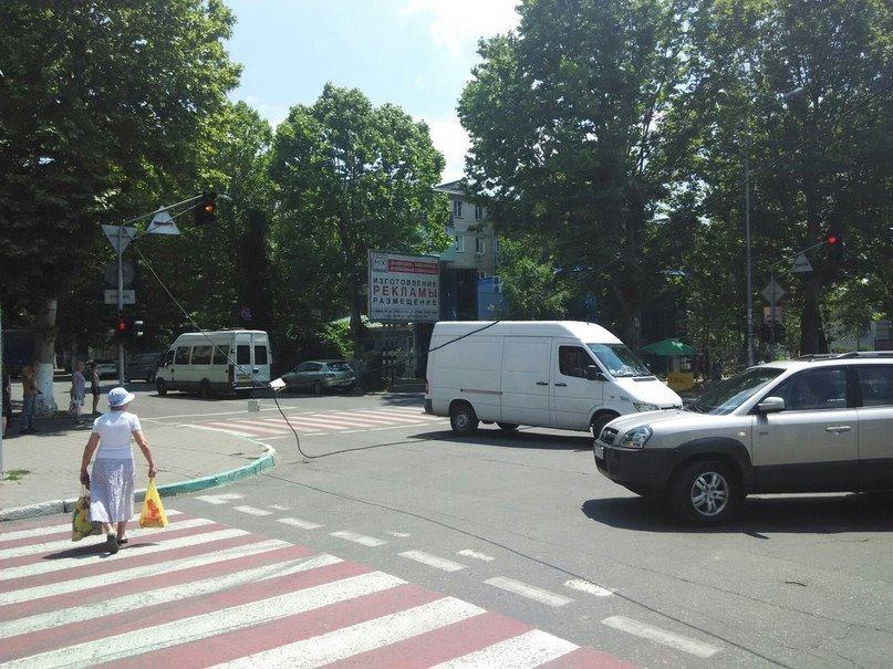 Под Одессой ветка упала на маму с маленьким ребенком (ФОТО) (фото) - фото 1