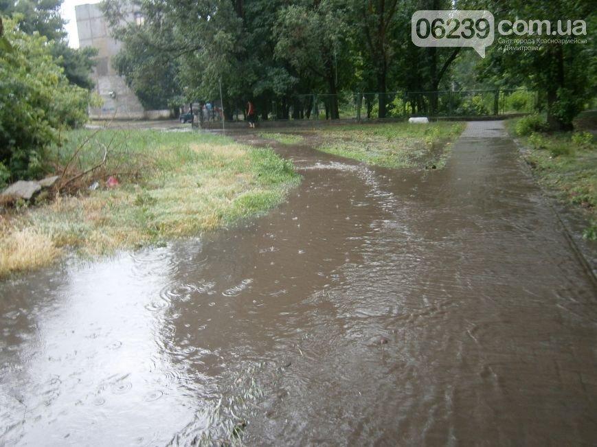 Димитровская «Венеция»: будут ли димитровчане строить «Ноев Ковчег»? (фото) - фото 2