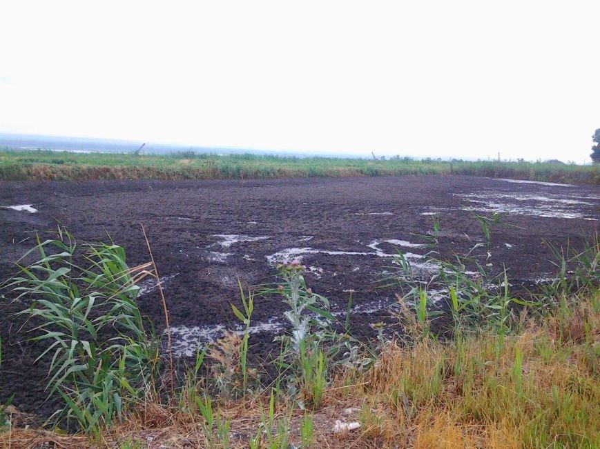 Экологический протест под Запорожьем: зловонные стоки «душат» местных жителей (ФОТО) (фото) - фото 1
