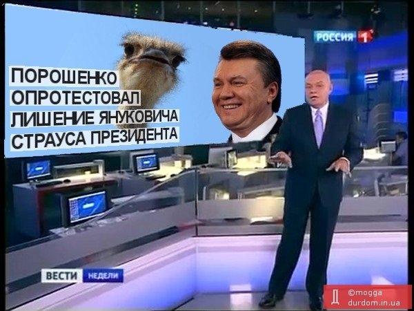 Бензиновый кризис, цены, страусы Януковича, потоп в Сочи - над чем смеялся интернет (фото) - фото 1