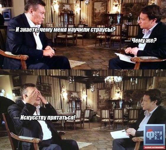 Бензиновый кризис, цены, страусы Януковича, потоп в Сочи - над чем смеялся интернет (фото) - фото 3