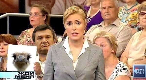 Бензиновый кризис, цены, страусы Януковича, потоп в Сочи - над чем смеялся интернет (фото) - фото 5