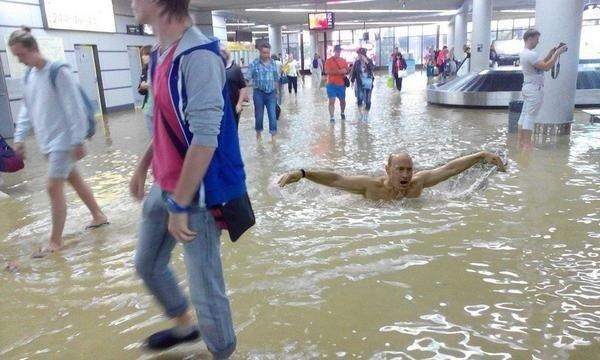 Бензиновый кризис, цены, страусы Януковича, потоп в Сочи - над чем смеялся интернет (фото) - фото 6