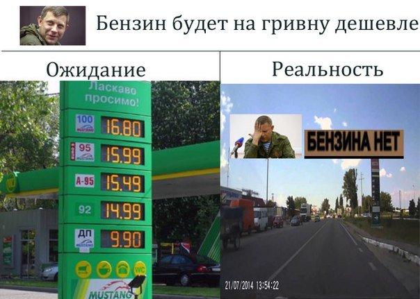 Бензиновый кризис, цены, страусы Януковича, потоп в Сочи - над чем смеялся интернет (фото) - фото 10