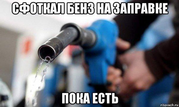 Бензиновый кризис, цены, страусы Януковича, потоп в Сочи - над чем смеялся интернет (фото) - фото 8