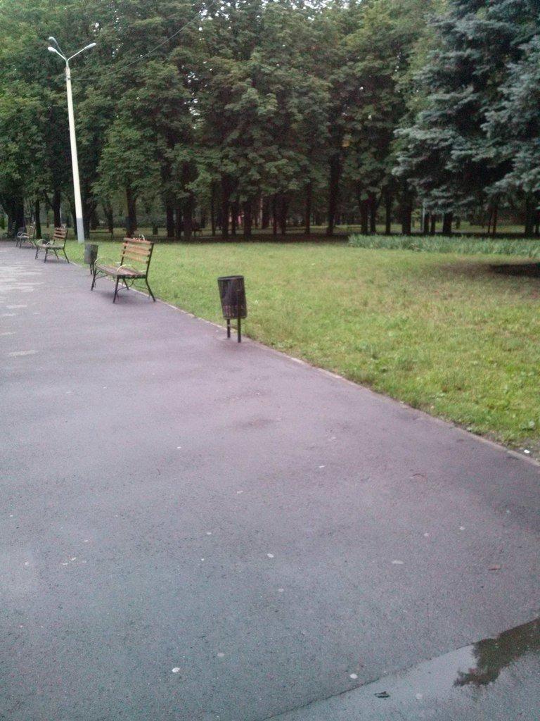 Что остается после отдыха криворожан в парках и скверах? (ФОТО) (фото) - фото 3