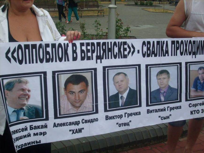 В День Конституции Бердянск митинговал, фото-1