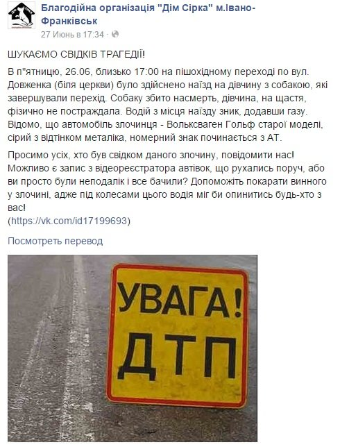 У франківську розшукують водія, який наїхав на пішохода та насмерть збив домашню собаку (фото) - фото 1