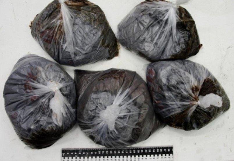 В Крыму перекрыли крупный канал поставки наркотиков из Украины (ФОТО) (фото) - фото 2