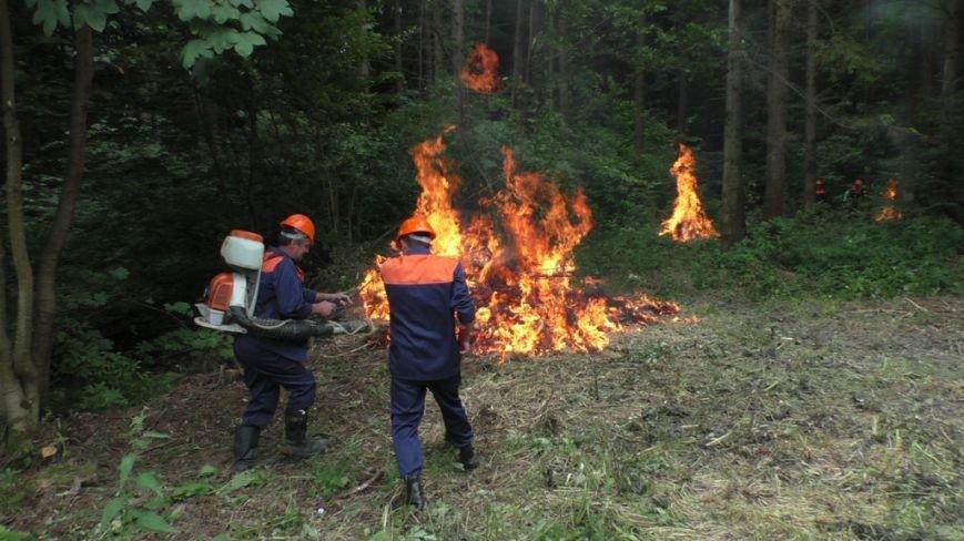 Буковинські рятувальники  вчилися  гасити  масштабну  лісову пожежу (ФОТО) (фото) - фото 8