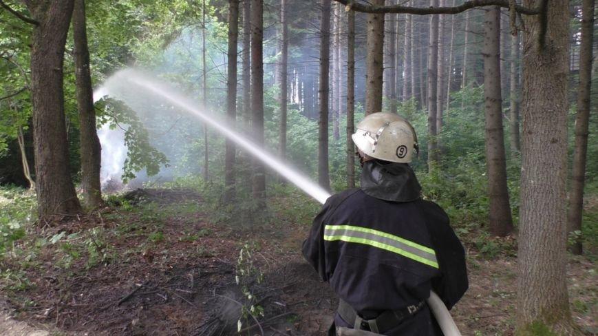 Буковинські рятувальники  вчилися  гасити  масштабну  лісову пожежу (ФОТО) (фото) - фото 4