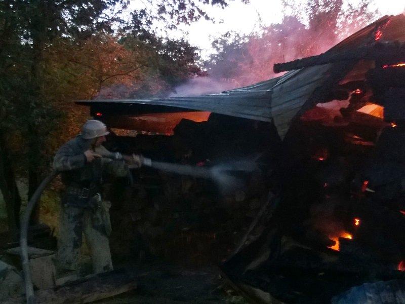На Косівщині вогонь вщент знищив помешкання місцевої сім'ї. Загинуло двоє людей. Фото (фото) - фото 4