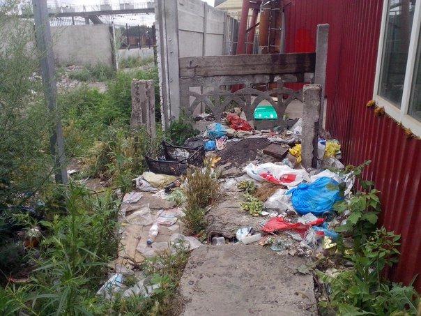 Мусорный беспредел в Красноармейске (фото) - фото 1