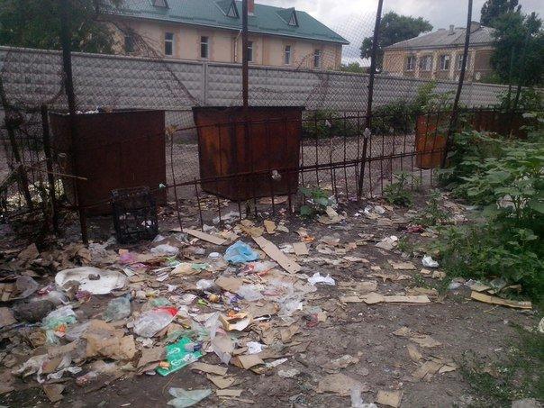 Мусорный беспредел в Красноармейске (фото) - фото 5