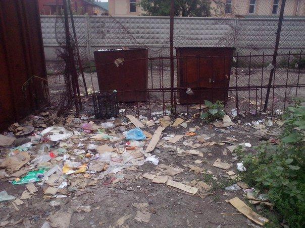 Мусорный беспредел в Красноармейске (фото) - фото 3