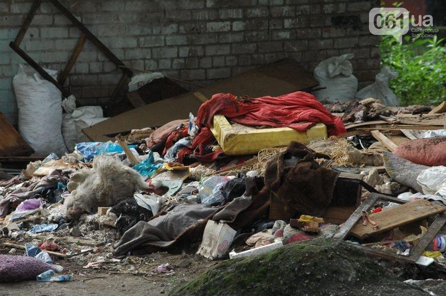 Коммунальщикам на заметку: на что жалуются запорожцы (ФОТО) (фото) - фото 4