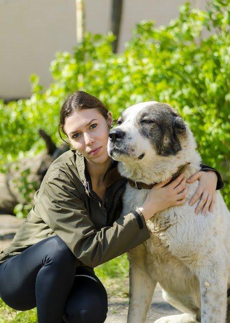 В Николаеве собака-патриот ищет дом (ФОТО) (фото) - фото 6