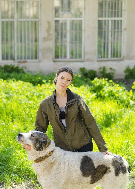 В Николаеве собака-патриот ищет дом (ФОТО) (фото) - фото 2