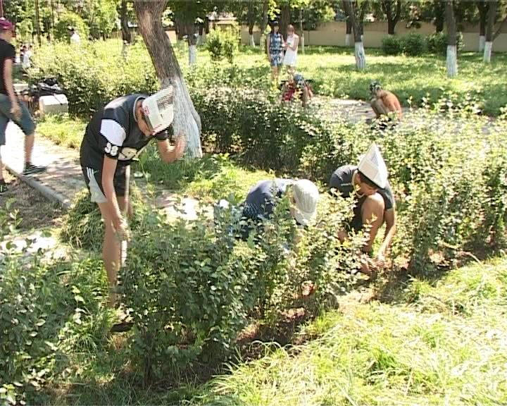 Подростки Армавира работают в бригадах по благоустройству (фото) - фото 1