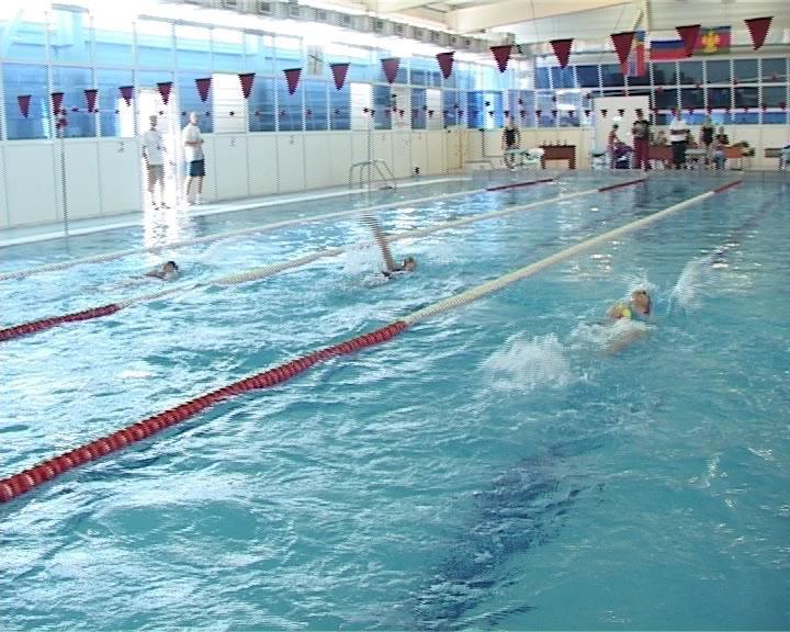 В Армавире прошло  открытое  первенство МО г. Армавира по плаванию,  посвященное памяти тренера Владимира Краснова (фото) - фото 1