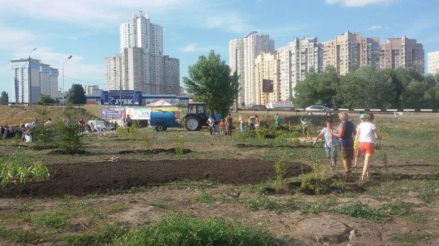 Конфликт исчерпан: на месте незаконной застройки на Осокорках разбили сквер (ФОТО) (фото) - фото 1